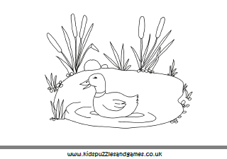 Duck Pond Colouring Page - Kids Puzzles and Games