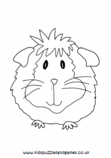Guinea Pig Coloring Pages - Best Coloring Pages For Kids | 318x224